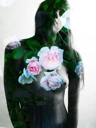 Nathan Coe, 'Sconset Rose', 2014