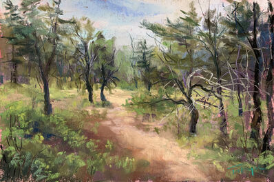 Takeyce Walter, 'Day 16: Pines on the Preserve ', February 2020