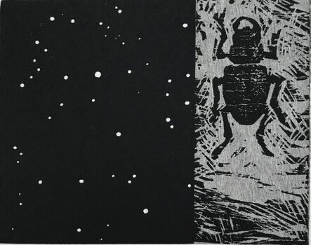 Vija Celmins, 'Night Sky / Beetle', 1990