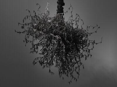 Petah Coyne, 'Untitled #1459 (Yoko Ogawa: The Memory Police)', 2019