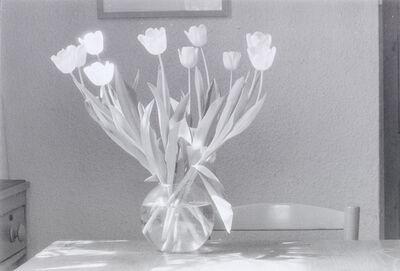 John Blakemore, 'Tulipa, Kitchen Series', 1980s/90s