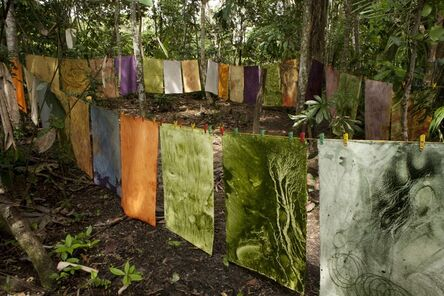 Susana Mejía, 'Color Amazonia', 2014
