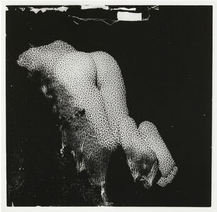 Thomas Gosset Valère, 'Nu coulant', 2015