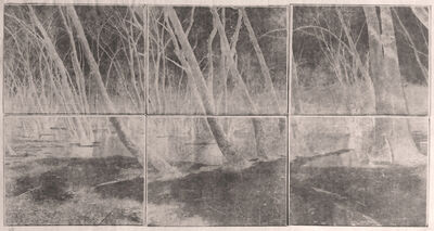 "Koichiro Kurita, '""Sleeping Woods"" Great Meadows, Concord, MA', 2014"