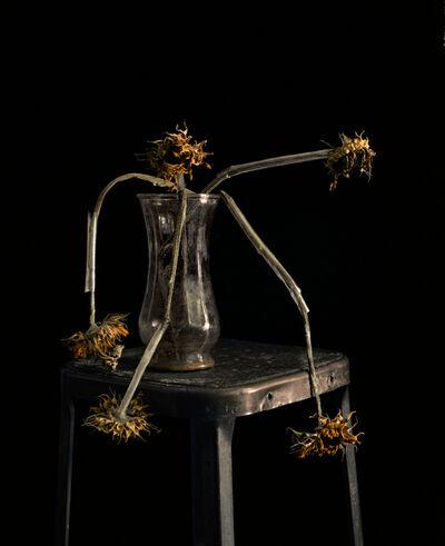 Brigitte Lustenberger, 'Flowers XXII', 2011