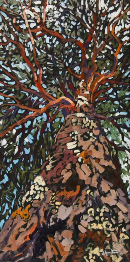 Deb Komitor, 'Branching Out', 2015