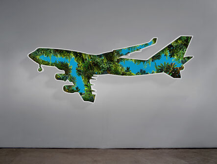 Doug Aitken, 'Jungle Plane', 2017