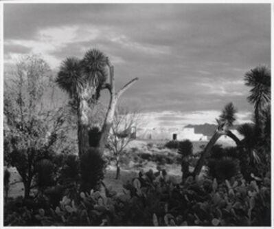 Paul Strand, 'Near Saltillo, Mexico', 1933