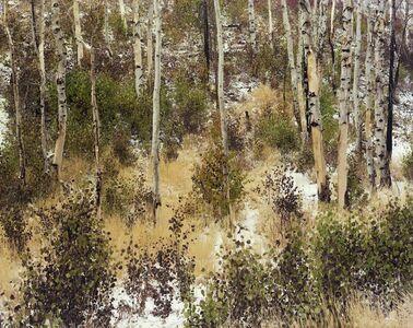 Laura McPhee, 'Late Fall (Aspens)', 2008