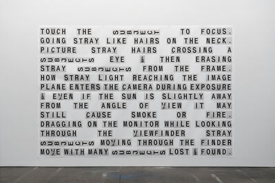 Shannon Ebner, 'SECTION 3: MULTIPLE EXPOSURES', 2019