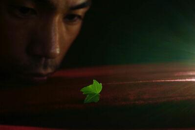 Shen Wei 沈玮 (b. 1977), 'Finding a Leaf', 2014