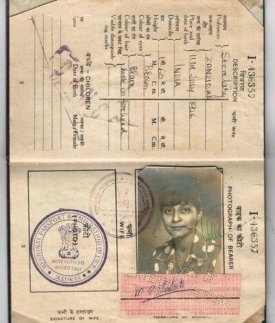 Soheila Sokhanvari, 'Indian Passport', 2010