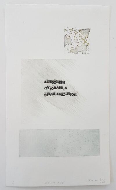 Elize de Beer, 'Distort ADC', 2017