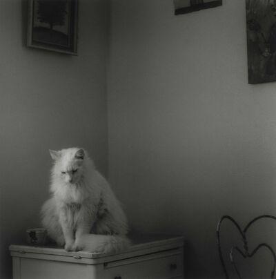 Ken Rosenthal, 'Reverie', 2010