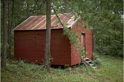 William Christenberry, 'Side of Red Building in Forest, Hale County, Alabama', 1984