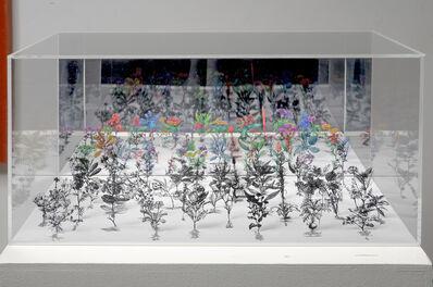 Zadok Ben-David, 'Flowerbox 3', 2008