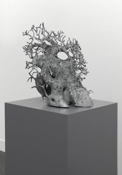 Agnieszka Kurant, 'A.A.I (System's Negative) No. 5', 2016
