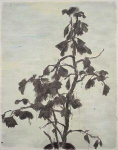 Wu Yiming 邬一名, 'The Gingko 2 银杏 2', 2013