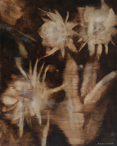 Katrine Claassens, 'Night Cactus', 2019