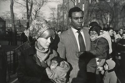 Garry Winogrand, 'Central Park Zoo, New York', 1967