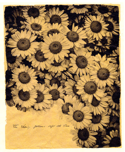 Brigitte Carnochan, 'The Daisy Follows the Sun', 2018