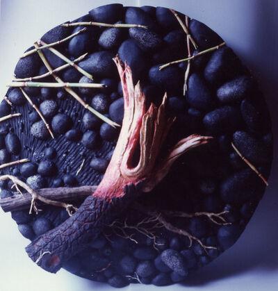 Piero Gilardi, 'Red log', 2000