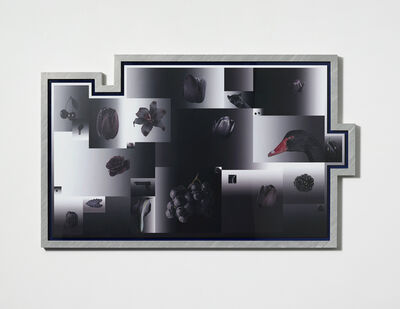 Shiyuan Liu / 刘诗园, 'Beyond The Pale', 2014