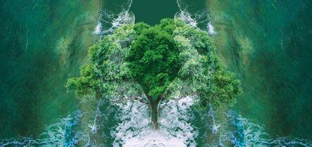 Sarah Ciracì, 'Like an Ocean with Its Waves (Tree)', 2017