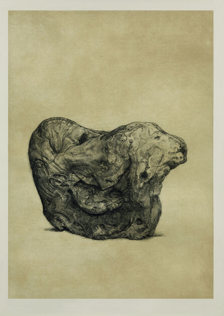 Shao Yinong & Mu Chen 邵逸农 & 慕辰, 'Objects of Nature - Jimo', 2014