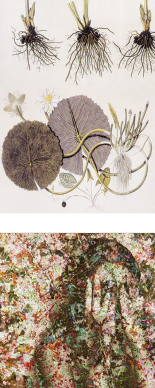 Sonia Mehra Chawla, 'History-Memory-Transfiguration: Signs of Skin 1', 2012