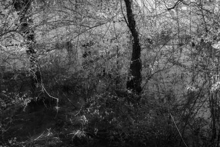 Richard Skoonberg, 'River Abstract', 2020
