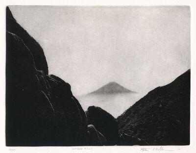 Peter Miller, 'Winged Fuji', 2011