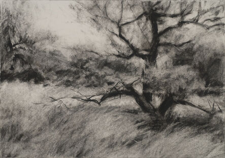 Connie Hayes, 'Orchard #4'