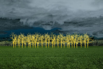 Ellen Jantzen, 'In The Field of Gold', 2012