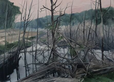 Nicholas Blowers, 'Savage Pond VIII Study', 2018