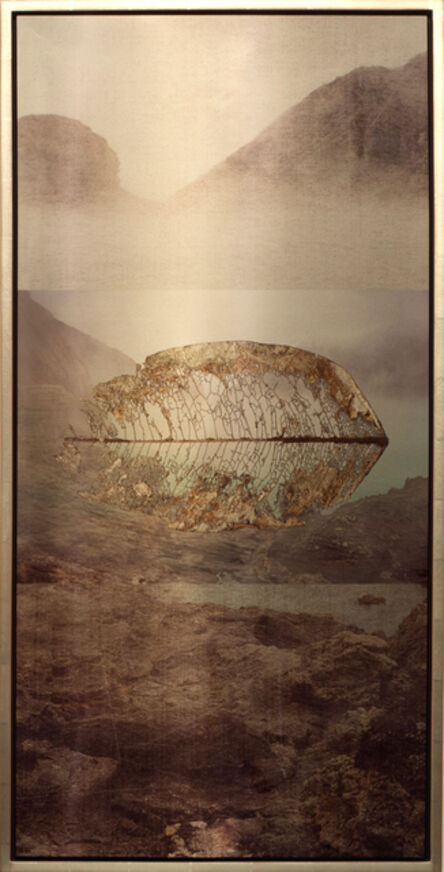 Meridel Rubenstein, 'Volcanic Leaf Suspended', 2011