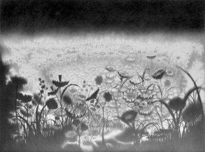 Davor Vrankic, 'La tendresse du cyclope', 2010