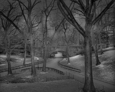 Michael Massaia, 'Snow Dusting, Central Park, New York City', 2013