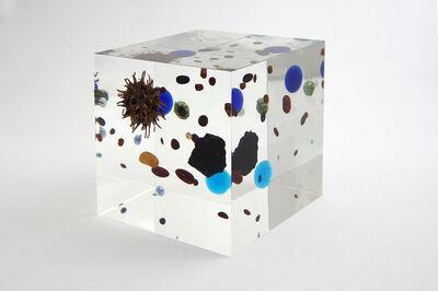 Satoshi Hirose, 'Beans Cosmos', 2014