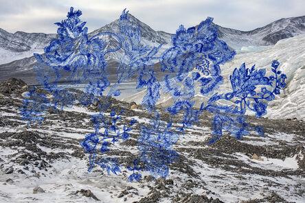 Zelda Zinn, 'Altered Arctic 5741', 2020