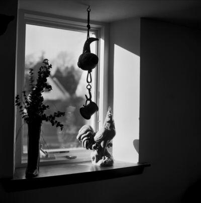 Elizabeth Nahum-Albright, 'Front Window', 2016