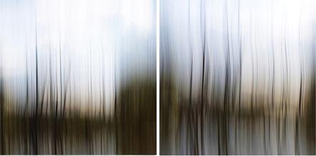 Etienne Labbe, 'Through the Wetlands', 2015