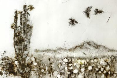 Cai Guoqiang 蔡国强, 'Sunshine and Solitude: Poppy Flowers', 2010