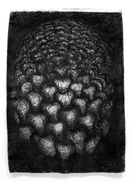 Peter Randall-Page, 'Warp and Weft III ', 2005
