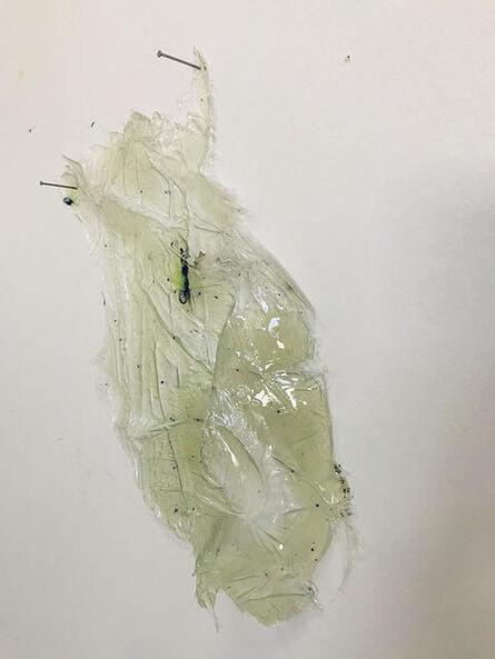 Lesley Bodzy, 'Transparent Wall Drape', 2020