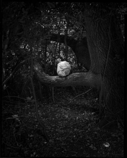 Danny Treacy, 'Rituals (Forest), Fig.5', 2017