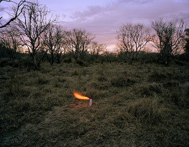 Adam Ekberg, 'An aerosol container in an abandoned peach orchard', 2012