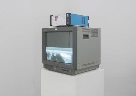 THE MUSTANGS IN SOCIAL MODULATOR 马氏社会调制器, 'Print', 2013-2016