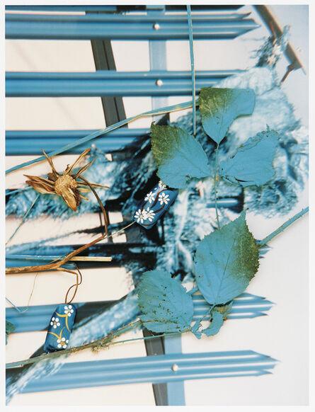 Stephen Gill, 'SGI 06 03 105 10', 2004-2007