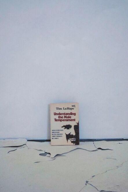 Joe Smith, 'Untitled (Understanding the Male Temperament', 2012